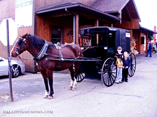 Our Visit To Amish Country And East Of Chicago Pizza Buffet In