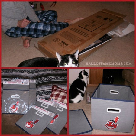 My Owners Box 6 Cube Organizer with MLB emblem.