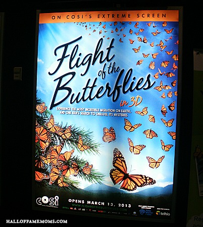 Flight of the Butterfly at Cosi