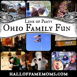 Ohio Family Fun Link up Party