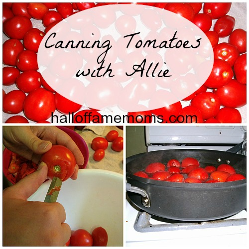 what you need to can tomatoes