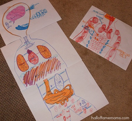 children's drawings of human body