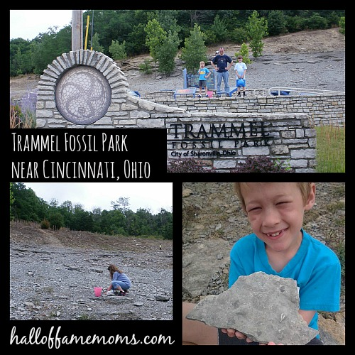 Dig and keep your fossils at Trammel Fossil Park: 100+ Ways to Learn about Ohio