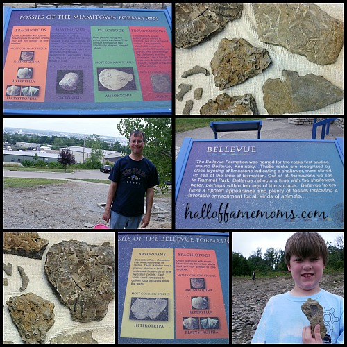 FREE: Trammel Fossil Park in Ohio