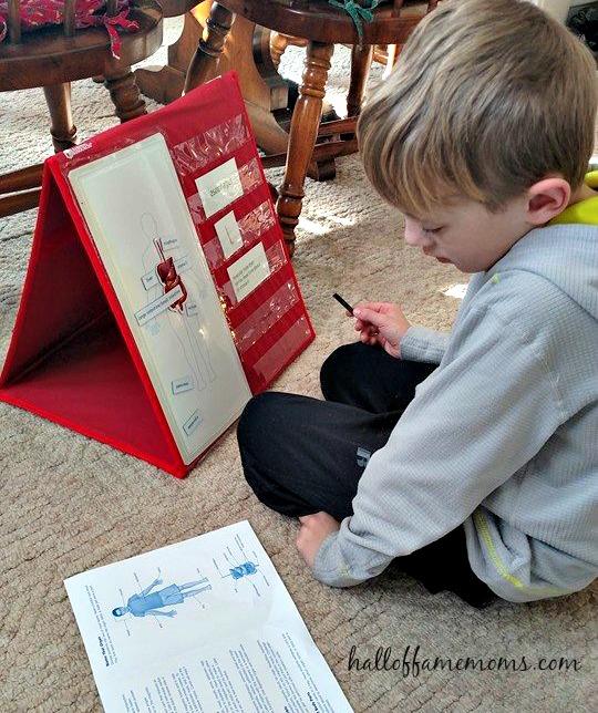 Homeschooling the Human Body