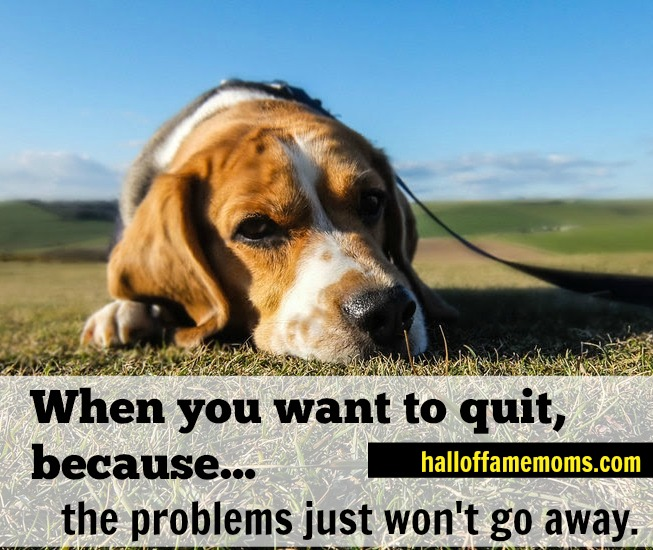 When you want to quit because the problems don't stay away.