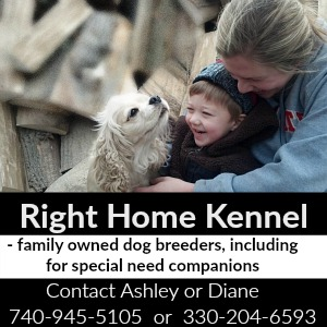 Right Home Kennel, Ohio family owned dog breeders