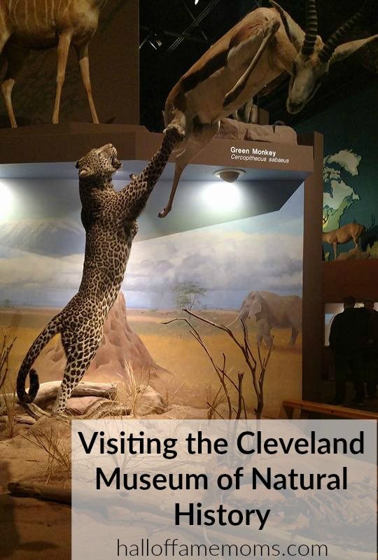 Visiting the Cleveland Museum of History