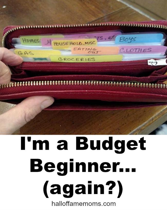 How I'm beginning a Budget