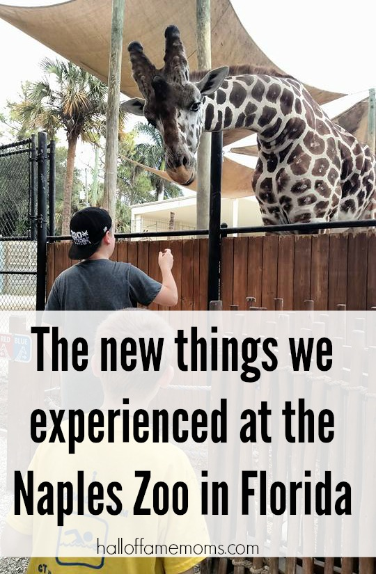 Visiting the Naples Zoo in Florida
