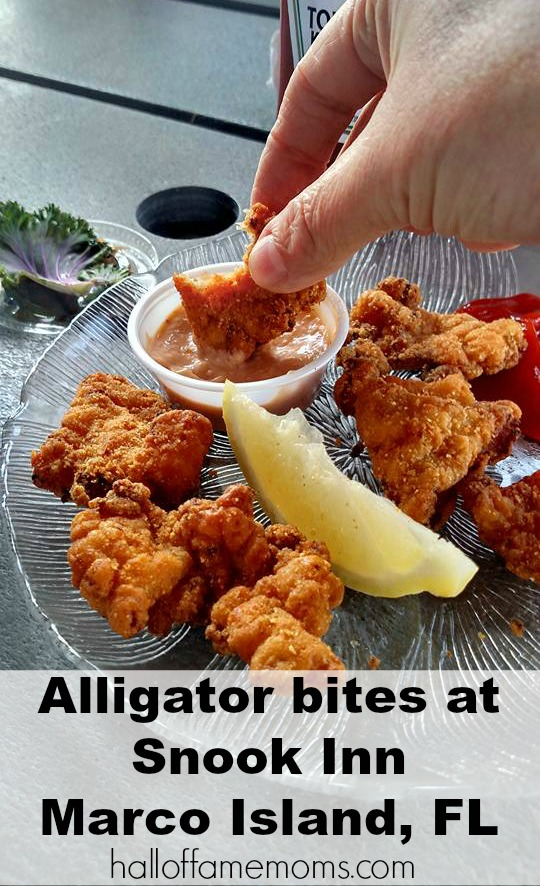 We ate alligator at Snook Inn on Marco Island, Florida