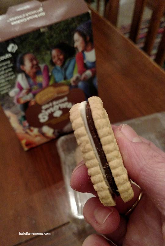 Have you tried the NEW Girl Scouts S'mores cookies?