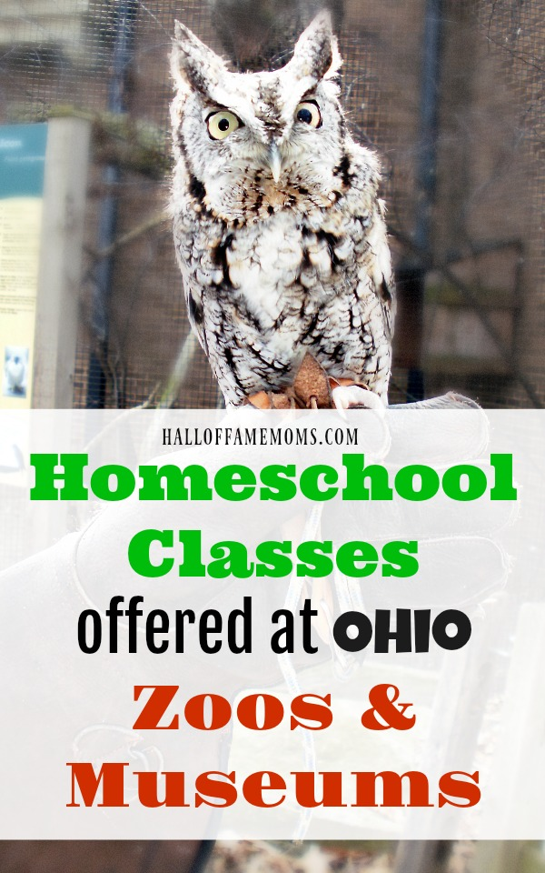 Homeschool Classes offered at Ohio Zoos and Museums