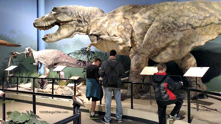 Inside our Visit to the Creation Museum