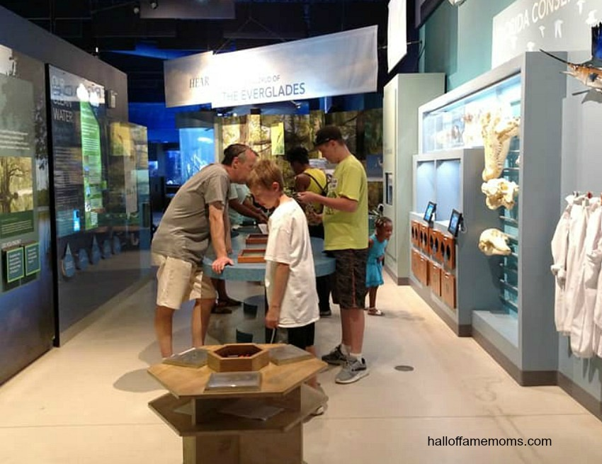 Inside the South Florida Science Center and Aquarium