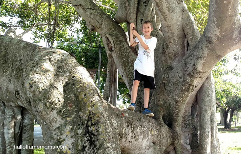 Homeschoolers Exploring the SE coast of Florida - Part 1