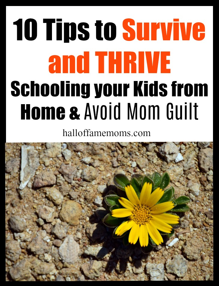 10 Tips to Survive and Thrive Schooling Your Kids from Home during this crisis