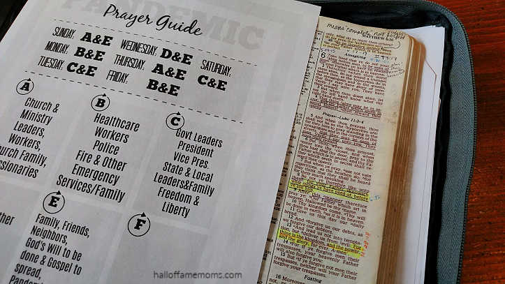 Organize your Prayer Life:  Printable Pandemic Prayer  Guide